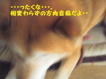 ・撰シ抵シ撰シ難シ趣シ点convert_20090203172846