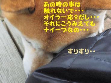 ・抵シ輔・・狙convert_20090207121933