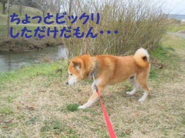 ・抵シ輔・・誉convert_20090207122627