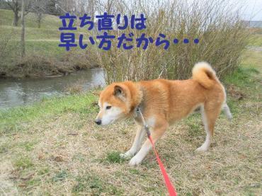 ・抵シ輔・・論convert_20090207122701