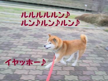 ・抵シ輔・・兩convert_20090207134947