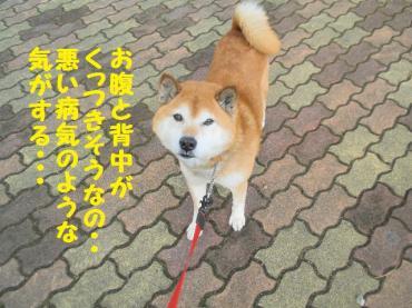 ・抵シ倥・・農convert_20090209101629
