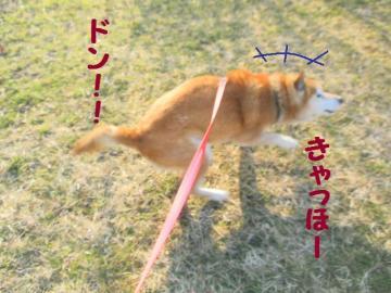 ・抵シ托シ偵・・点convert_20090212234831