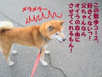 ・抵シ托シ輔・・点convert_20090215223322