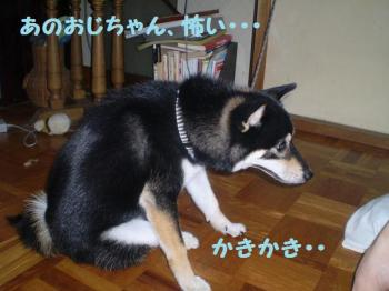 ・假シ薙・・胆convert_20090216093438