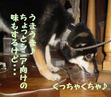 ・假シ托シ悶・・廟convert_20090217104206