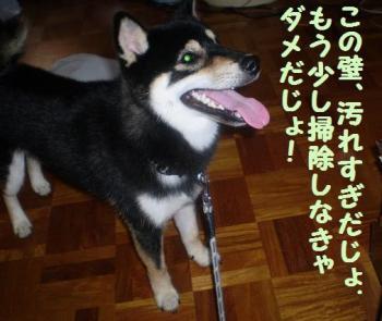 ・假シ薙・・論convert_20090217124635