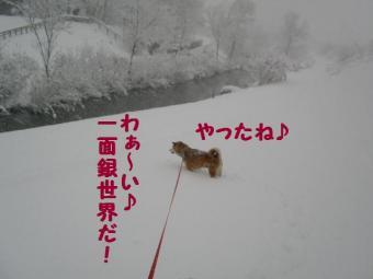 ・抵シ托シ励・・狙convert_20090217171559