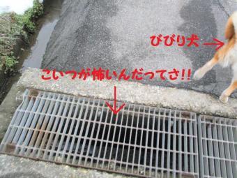 ・抵シ抵シ薙・・廟convert_20090223172331