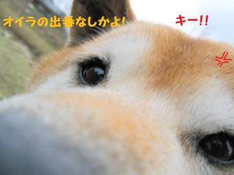 ・抵シ抵シ農convert_20090224191731