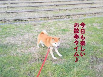 ・抵シ抵シ悶・・狙convert_20090226193715