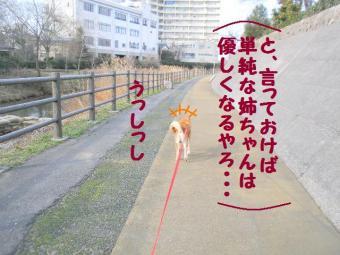 ・抵シ抵シ悶・・棒convert_20090226194039