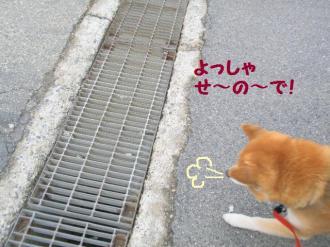 ・抵シ抵シ励・・農convert_20090227200407