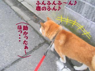 ・抵シ抵シ励・・誉convert_20090227200532