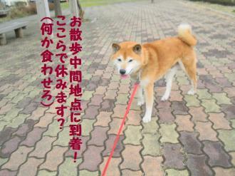 繝サ・誉convert_20090301103127