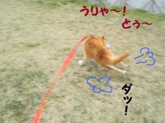 ・薙・・薙・・・90303+052_convert_20090304171709