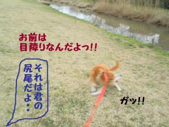 ・薙・・薙・・胆convert_20090304171749
