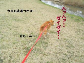 ・薙・・薙・・点convert_20090304171817