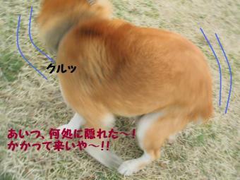 ・薙・・薙・・農convert_20090304172123