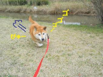・薙・・薙・・誉convert_20090304195427