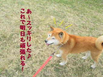・薙・・薙・・論convert_20090305002122
