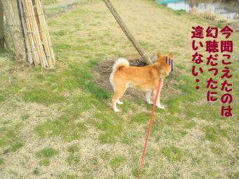 ・薙・・輔・・狙convert_20090306112515