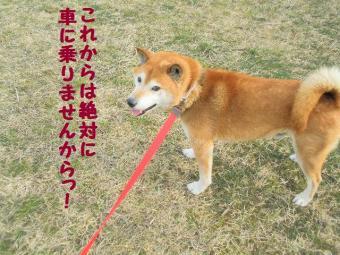 ・薙・・輔・・農convert_20090306132828