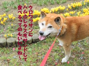 ・難シ呻シ・90309+030_convert_20090309220829