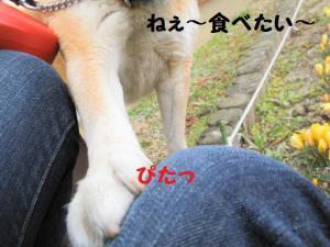 ・薙・・倥・・廟convert_20090309223135