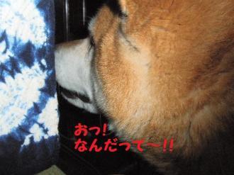 ・薙・・托シ抵シ点convert_20090312173715