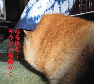 ・薙・・托シ胆convert_20090312173830