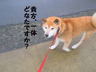 ・薙・・托シ費シ胆convert_20090314204427