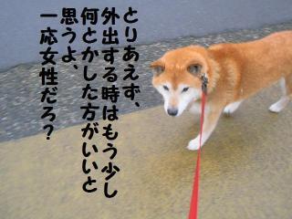 ・薙・・托シ費シ点convert_20090314204451