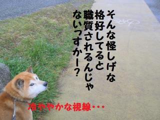 ・薙・・托シ農convert_20090314220525