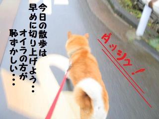 ・薙・・托シ費シ廟convert_20090314220553