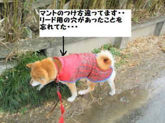 ・難シ托シ輔・・点convert_20090315235340