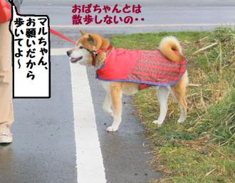 ・薙・・托シ包シ棒convert_20090316171012
