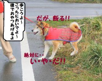 ・難シ托シ輔・・狙convert_20090316172817