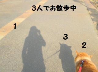 ・難シ托シ假シ農convert_20090318221243