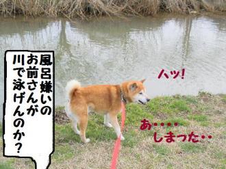 ・難シ抵シ撰シ点convert_20090320234617