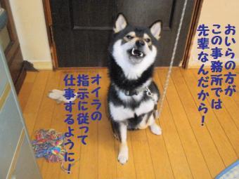・難シ抵シ難シ誉convert_20090323135049