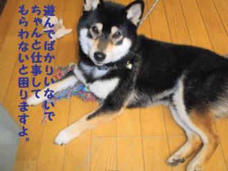 ・難シ抵シ・90322+006_convert_20090323135121