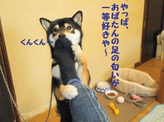 ・難シ抵シ難シ廟convert_20090323135301