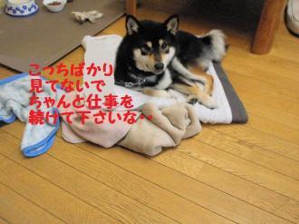 ・難シ抵シ暦シ狙convert_20090328203152