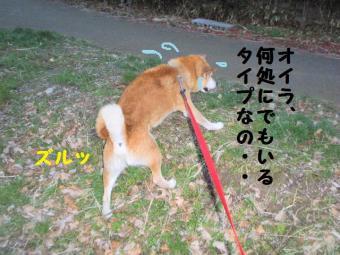 ・費シ包シ廟convert_20090405220115