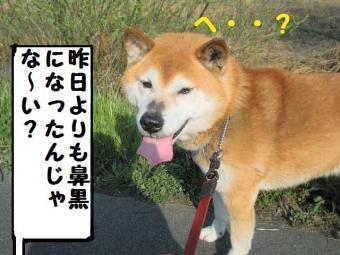 ・費シ・90408+025_convert_20090408223047
