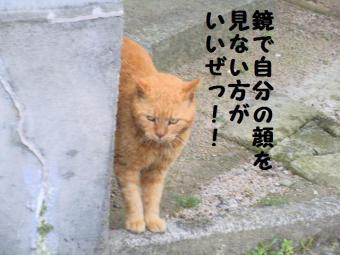 ・費シ難シ・90403+075_convert_20090408222834