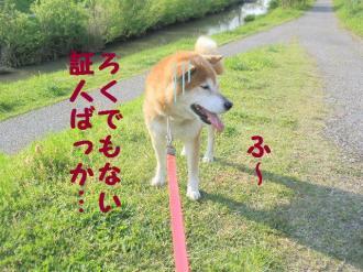 ・包シ費シ・90504+016_convert_20090505215324