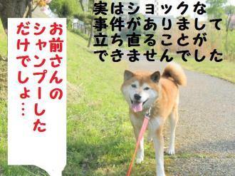 ・包シ費シ棒convert_20090505215247