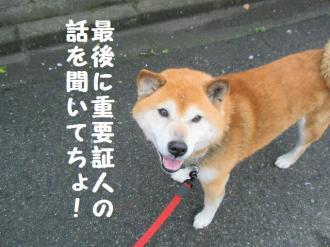 ・包シ包シ神convert_20090505223427